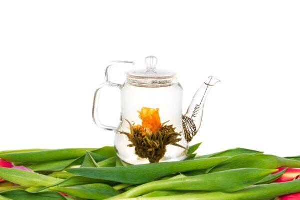 Nederlandse theebloemen